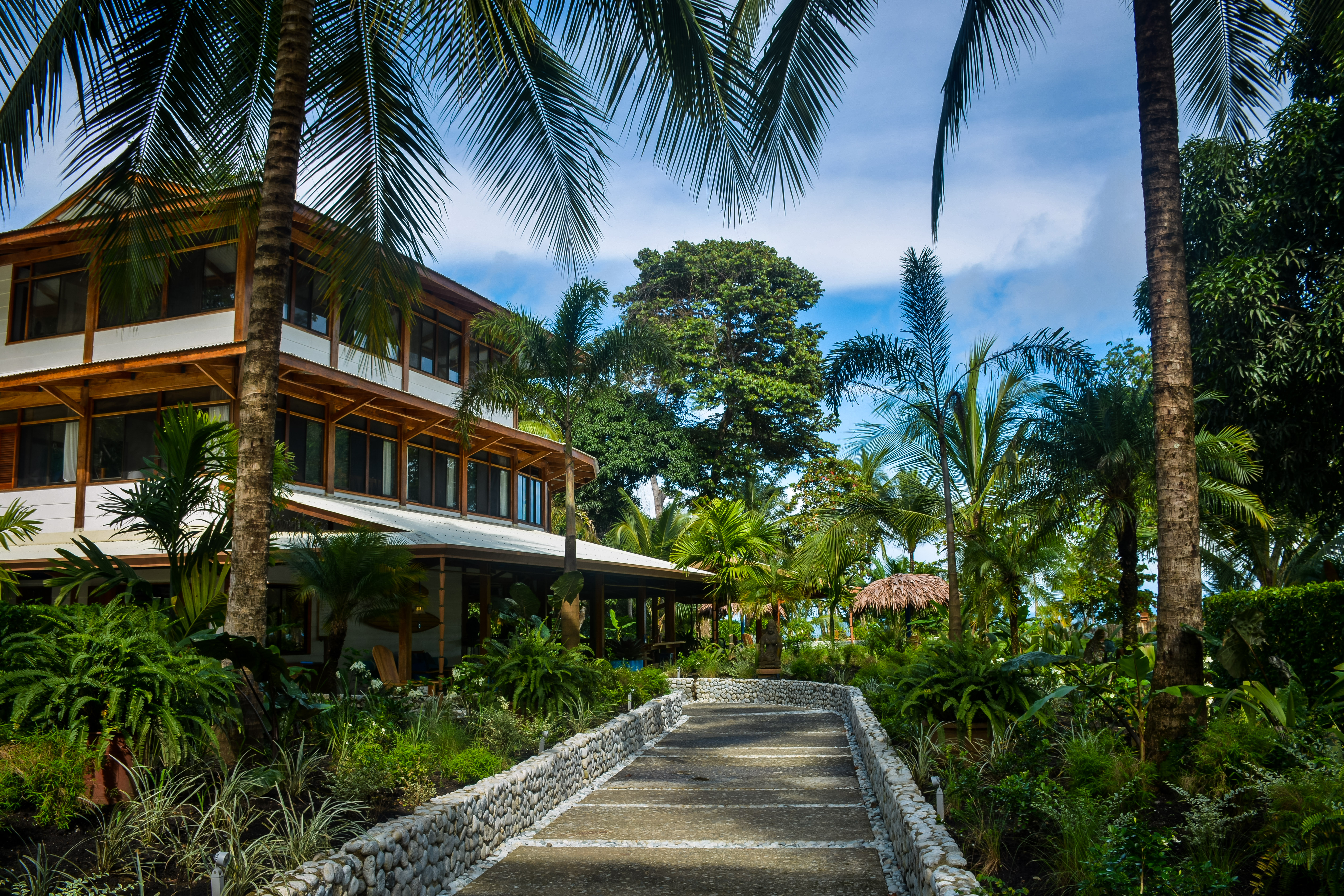 My 5 unexpected business benefits of a trip to Blue Osa, Costa Rica